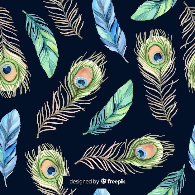 Joli motif de plumes de paon aquarelle Vecteur gratuit