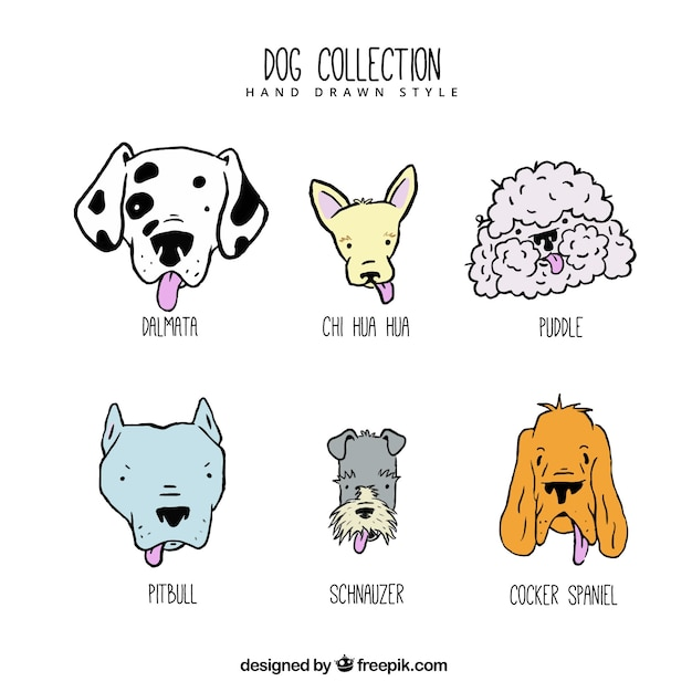 Jolie collection de chiens dessinés à la main Vecteur gratuit
