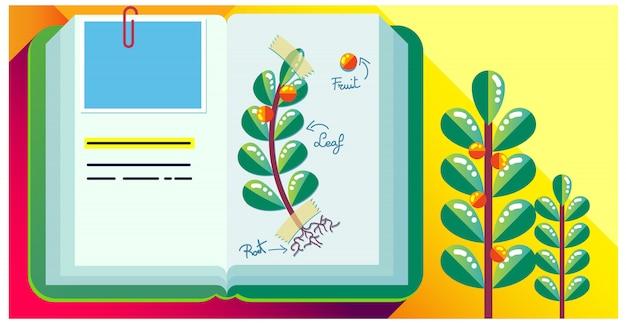 Journal de livre coloré, herbier Vecteur Premium