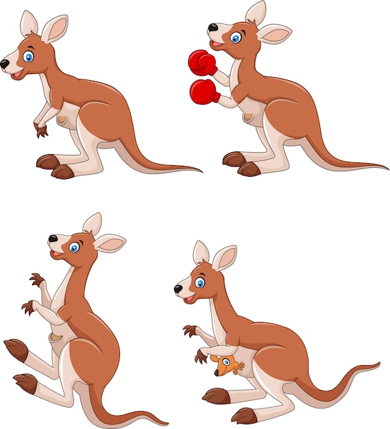 Kangourou cartoon collection ensemble isolé sur fond blanc Vecteur Premium