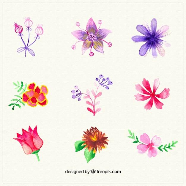 La collecte des fleurs aquarelle t l charger des for Aquarelle fleurs livraison gratuite