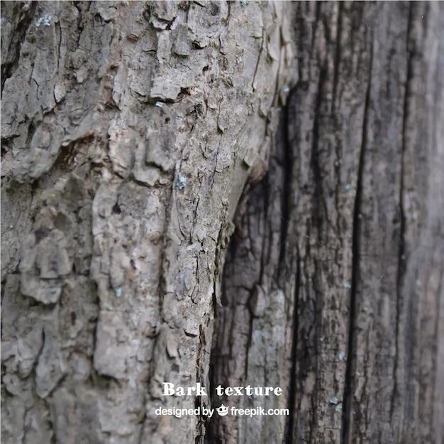 la texture du bois naturel incroyable t l charger des vecteurs gratuitement. Black Bedroom Furniture Sets. Home Design Ideas