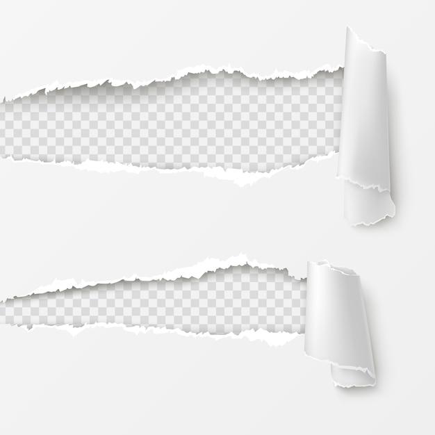 Lacunes horizontales sur fond blanc Vecteur gratuit