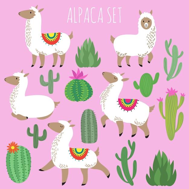 Lamas d'alpaga blanc mexicain et plantes du désert vector ensemble Vecteur Premium