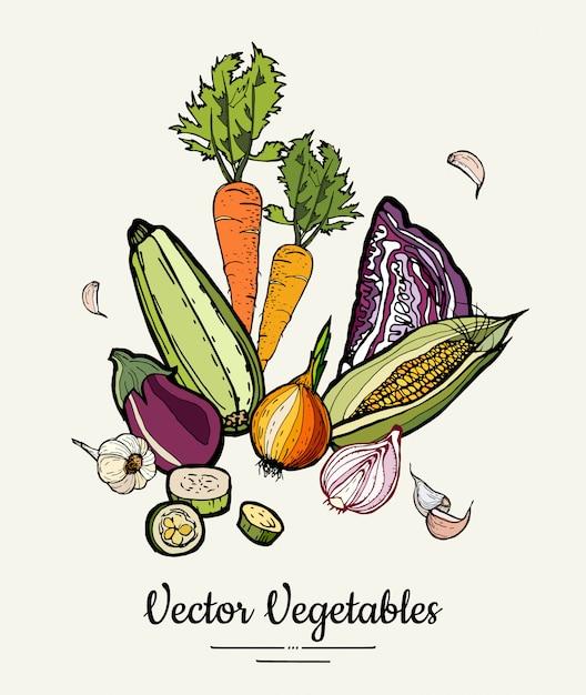 Légumes colorés dessinés à la main hipster vector Vecteur Premium