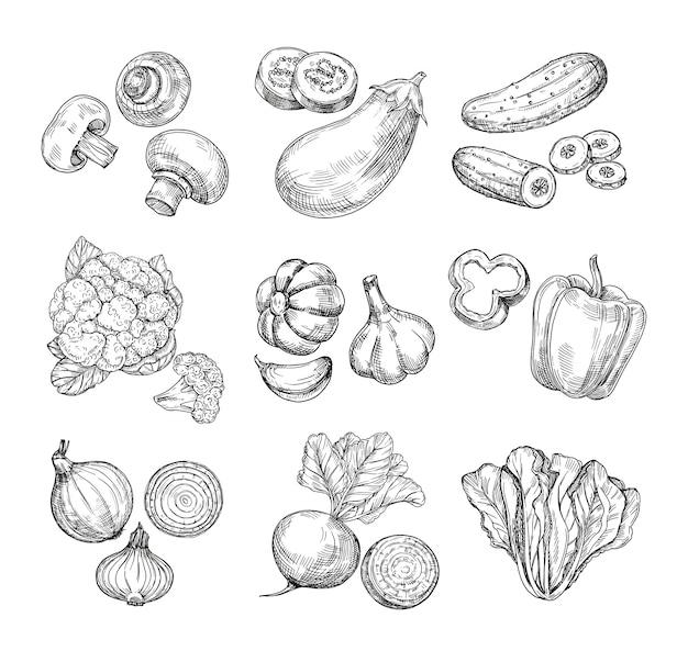 Légumes Dessinés à La Main. Chou-fleur De Jardin, Poivron Et Aubergine, Champignons. Vecteur Premium