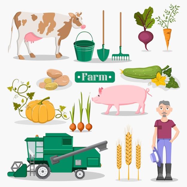 Légumes de la ferme Vecteur Premium