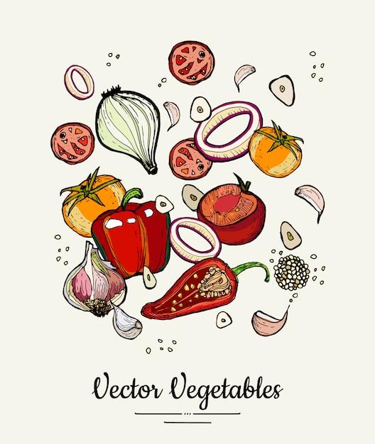Légumes isolés illustration dessinée à la main. légumes de couleur dessinés à la main hipster vecteur pour affiche végétarienne Vecteur Premium