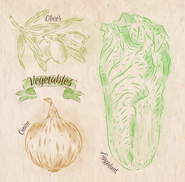 Légumes peints de différentes couleurs dans un style campagnard oignon, chou napa, olives Vecteur Premium