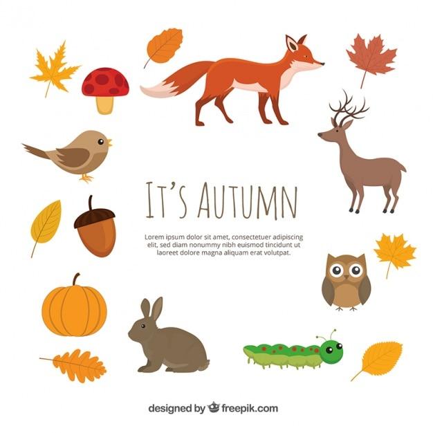 les animaux et les l ments naturels d 39 automne t l charger des vecteurs gratuitement. Black Bedroom Furniture Sets. Home Design Ideas