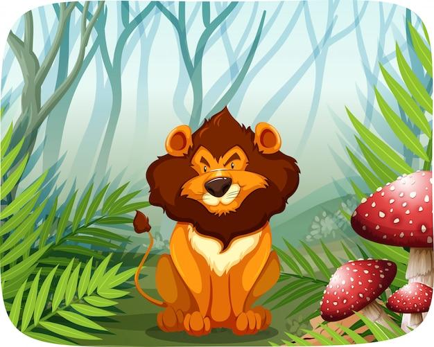 Lion dans la nature Vecteur Premium