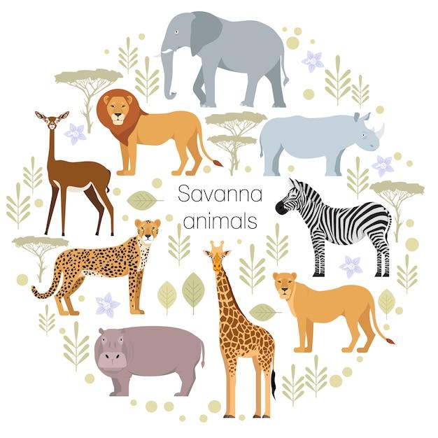 Lion guépard animaux éléphant de la savane africaine Vecteur Premium