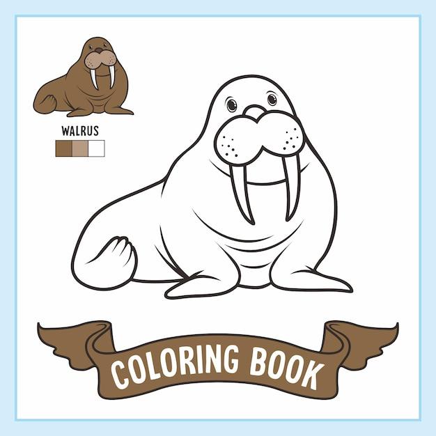 Livre De Coloriage Animaux Morses Vecteur Premium
