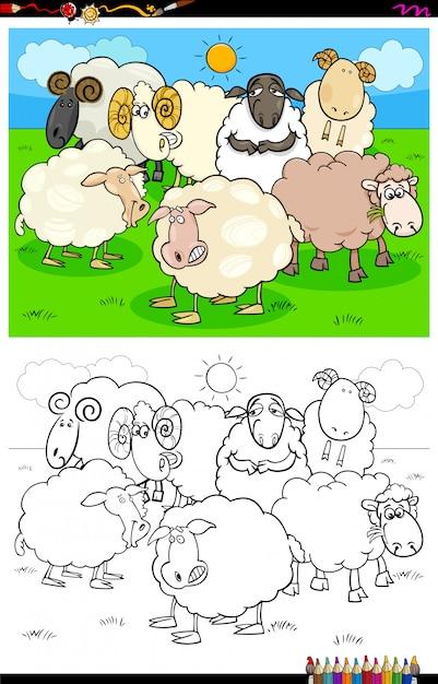 Livre de coloriage groupe de personnages de moutons heureux Vecteur Premium