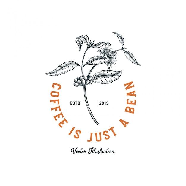 Logo de café, arbre à café avec fleur et haricot pour la création de logo Vecteur Premium