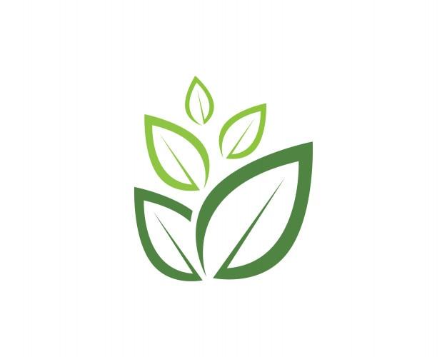 foto de Logo de nature feuille verte et modèle de symbole