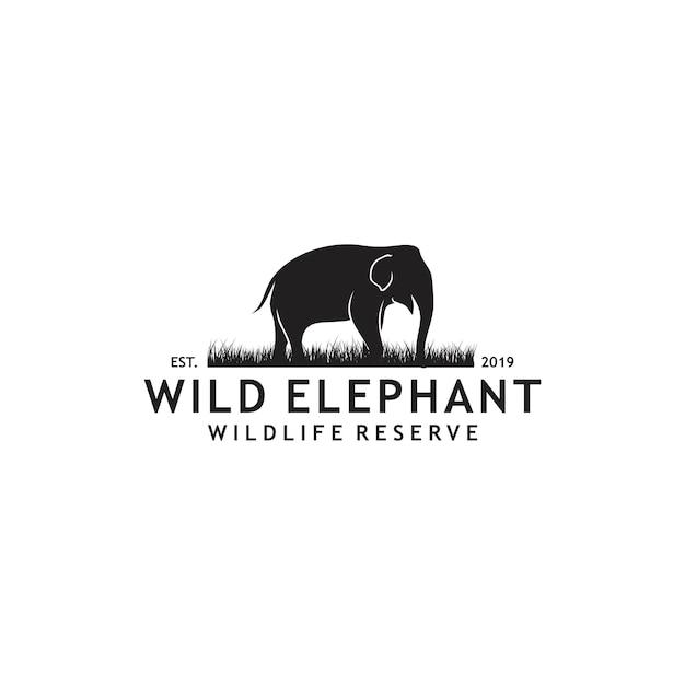 Logo éléphant sauvage Vecteur Premium