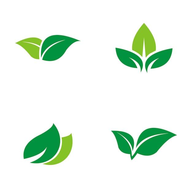 foto de Logo feuille verte Télécharger des Vecteurs Premium