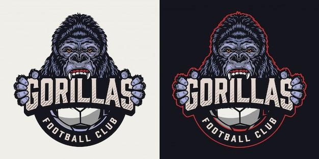 Logo Vintage Coloré De Club De Football Vecteur Premium
