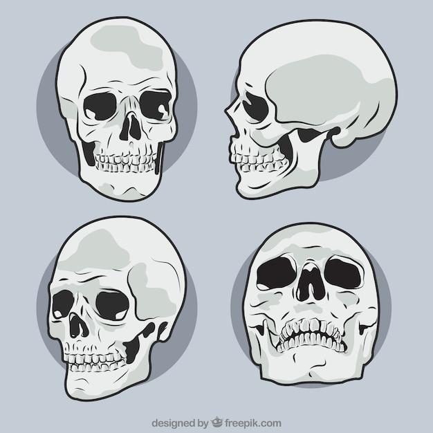 Lot de crânes dessinés à la main Vecteur gratuit