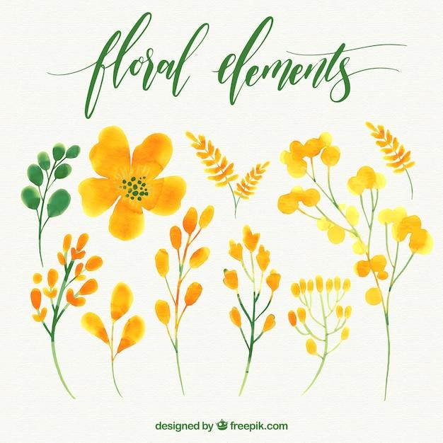 Lot de fleurs à l'aquarelle Vecteur gratuit