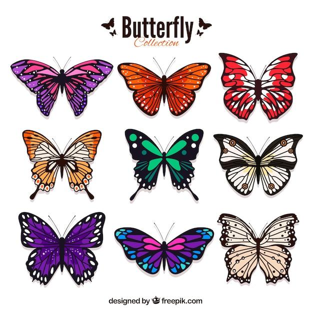 Lot de papillons colorés dans le style réaliste Vecteur gratuit