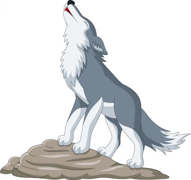 Loup de dessin animé hurlant sur le rocher Vecteur Premium