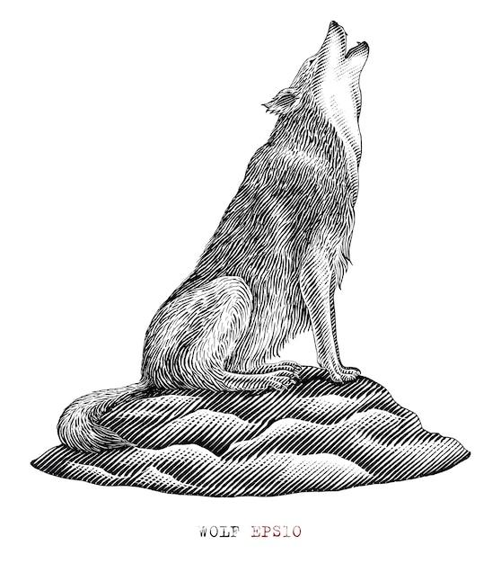 Loup Noir Et Blanc Hurlant Dans Le Style De Gravure Vecteur gratuit