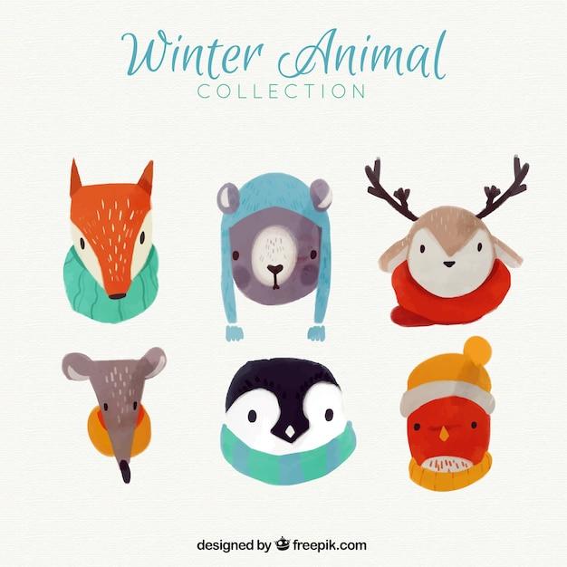 Lovely animals aquarelle avec des accessoires d'hiver Vecteur gratuit