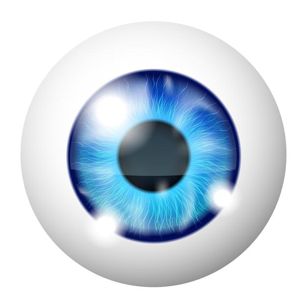 Macro De L'oeil Humain Bleu Vector Sur Blanc Vecteur gratuit