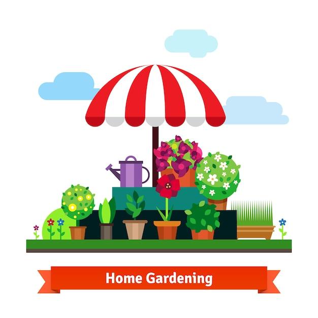 Magasin greening à la maison avec des plantes, des fleurs, de l'herbe Vecteur gratuit