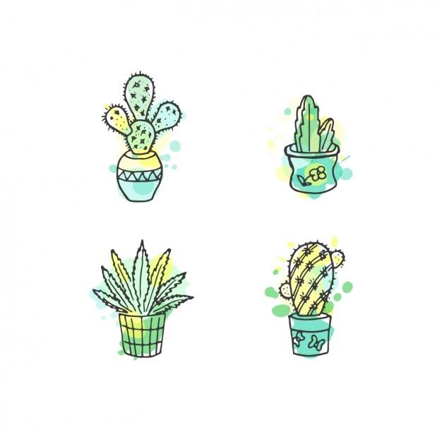 Main cactus collection dessinée avec l'aquarelle Vecteur gratuit