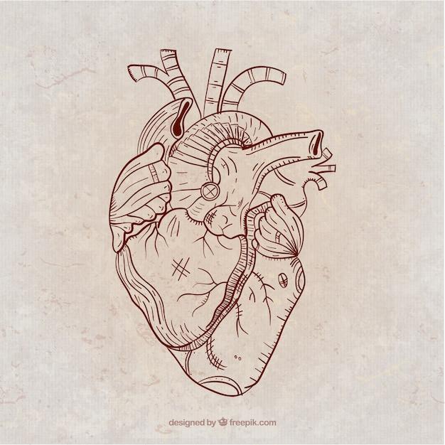 Coeur Steampunk main coeur steampunk dessiné | télécharger des vecteurs gratuitement