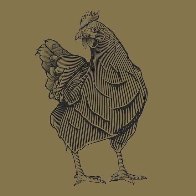 Main, dessin vintage illustration de chiken Vecteur Premium