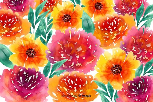 Marguerites Et Roses Aquarelle Fond Floral Vecteur gratuit