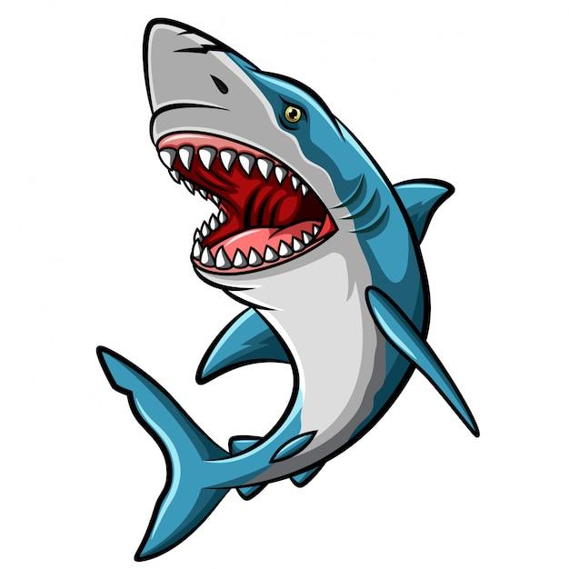 Mascotte De Requin En Colère De Dessin Animé Sur Fond Blanc Vecteur Premium