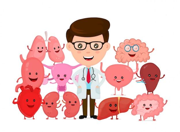 Médecin Avec Des Organes Internes Humains Vecteur Premium