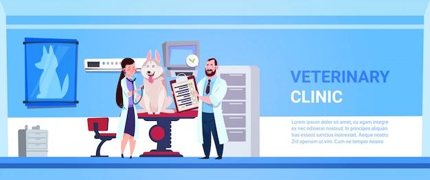 Médecin vétérinaire examinant le chien dans la bannière de concept de médecine vétérinaire de bureau de clinique Vecteur Premium