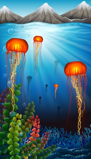 Méduse Nageant Sous L'océan Vecteur Premium