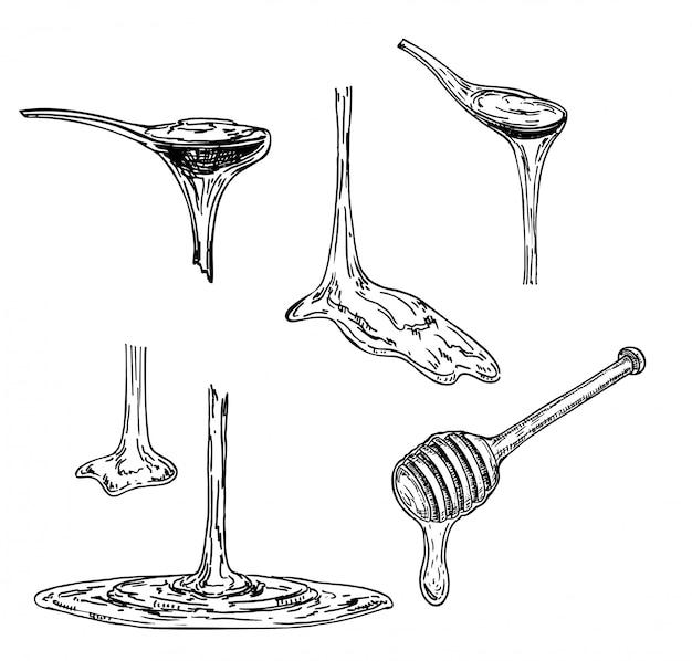 Le Miel Ou Le Sirop D'érable S'écoule D'une Cuillère. Esquisser. Substance Visqueuse Dégoulinant D'une Cuillère. Illustration Sur Fond Blanc. Vecteur Premium