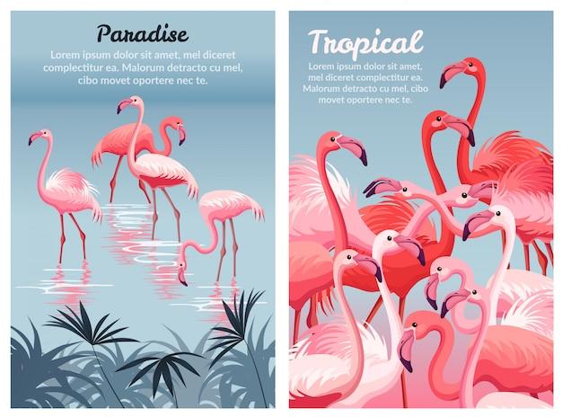 Modèle d'affiche flamingo. Vecteur Premium