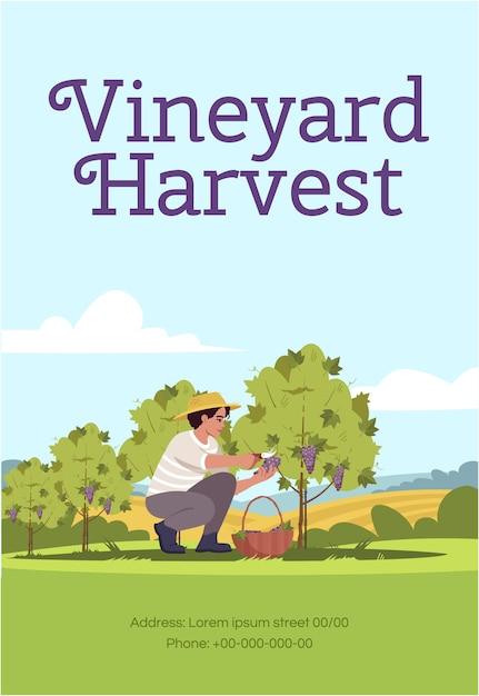 Modèle D'affiche De Récolte De Vignoble Vecteur Premium