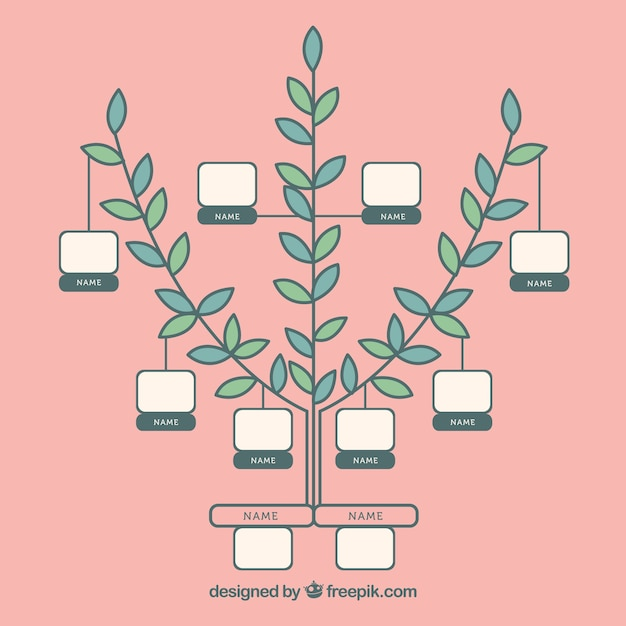 Modèle d'arbre généalogique minimaliste Vecteur gratuit