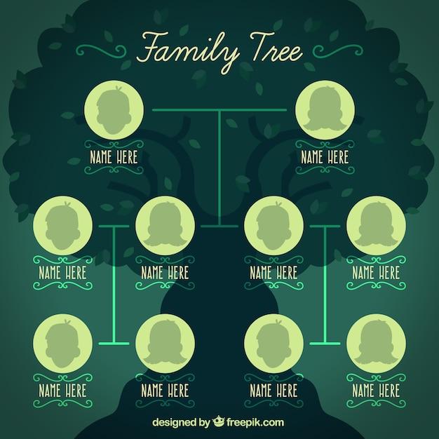 Modèle arbre généalogique Vecteur gratuit