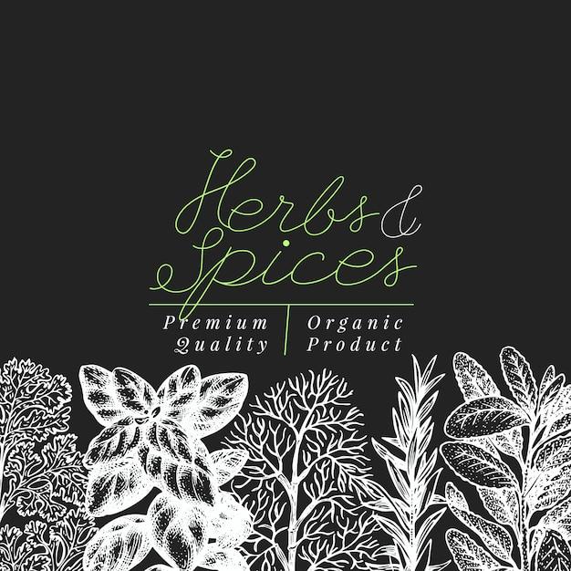 Modèle de bannière d'herbes et d'épices culinaires. Vecteur Premium