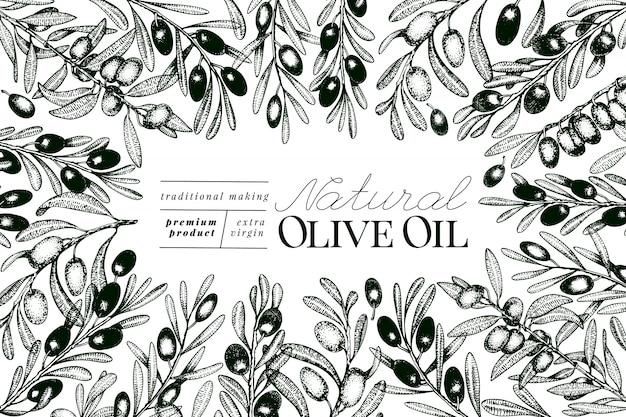 Modèle de bannière d'olivier. Vecteur Premium