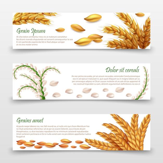 Modèle de bannières de céréales agricoles. Vecteur Premium