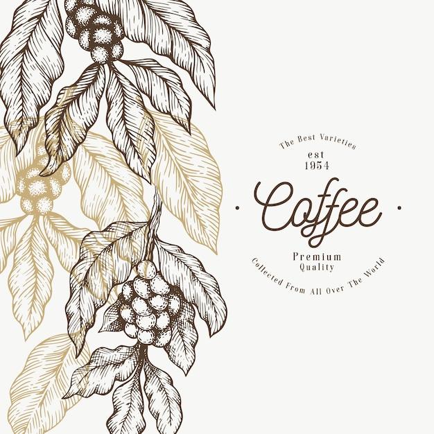 Modèle de branche de caféier Vecteur Premium
