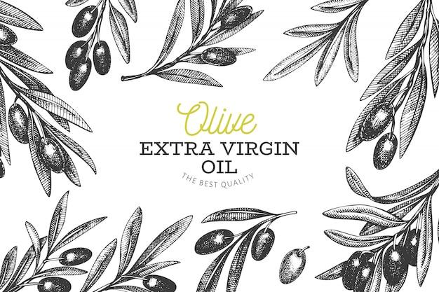 Modèle de branche d'olivier. Vecteur Premium