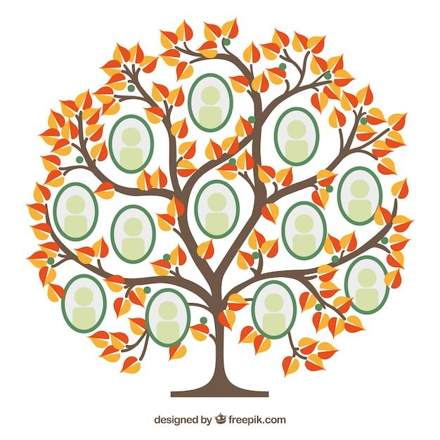 Modèle de collage de photo avec arbre plat Vecteur gratuit